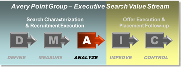 Avery Point Group - Lean Sigma Search - Executive Search Analyze Phase